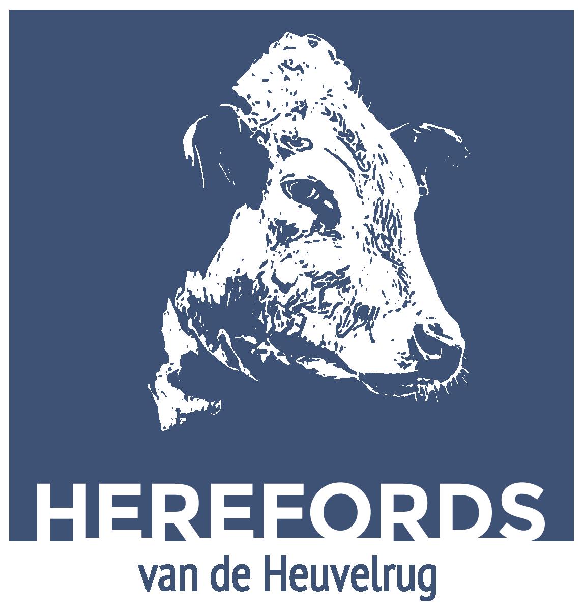 Herefords van de Heuvelrug