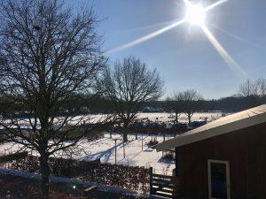 Uitzicht winter Eekhoeve Veenendaal